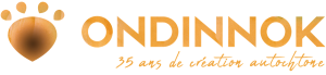 logo ondinnok